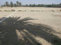 Land in Kom Ombo-photo @index